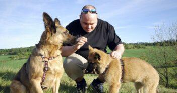Mit dem Hund durch dick und dünn: gesünder leben mit Hund