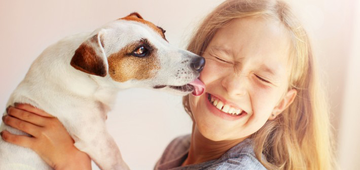 welcher hund für's kind hunde und kinder  so geht das