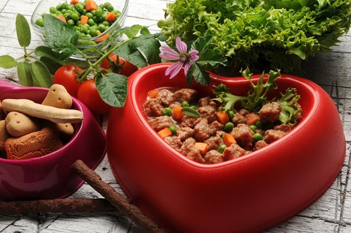 Die Firma WOLFSBLUT bietet ein reichhaltiges Angebot an Trocken- und Nassnahrung in unterschiedlichen Geschmacksrichtungen. Rothirsch, Ziegenfleisch, Rentier oder Forelle sind nur einige der angebotenen Geschmacksrichtungen. (#02)
