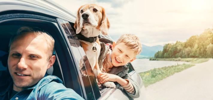 Urlaub mit Hund: Joggen, Wandern, Fahrrad fahren mit Hund und Spaß