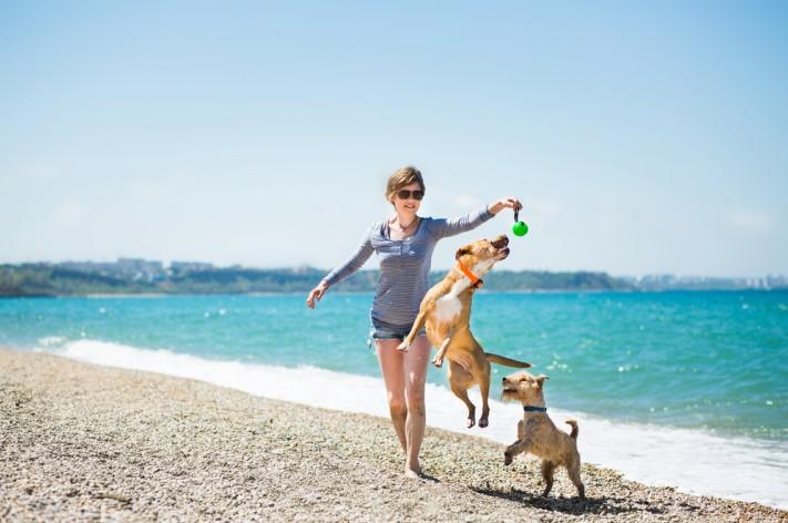 Ein Spaziergang mit dem Hund am Strand entlang, ist für Hund und Herrchen eine tolle Erholung, die man dann auch gerne wiederholt. (#1)