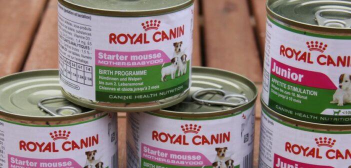 Royal Canin Nassfutter Starter Mousse Mother & Babydog und Royal Canin Mini Junior im Test