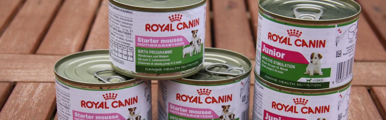 royal canin nassfutter starter mousse mother babydog und royal canin mini junior im test. Black Bedroom Furniture Sets. Home Design Ideas