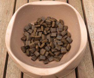 Bild 2: Die PLATINUM Adult Iberico + Greens Kroketten sind flach und für kleine und große Hund geeignet.