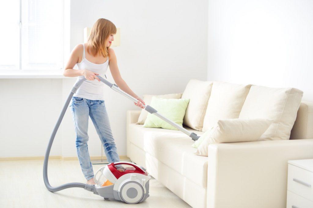 Tägliches Saugen von Teppich, Sofa und anderen Möbeln hilft, die Hundehaare in der Wohnung im Zaum zu halten. (#2)