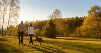 Gassi gehen: Tipps fürs Gassi gehen mit ihrem Hund