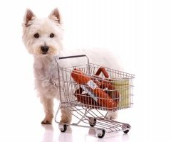 Was ist im Hundefutter enthalten?