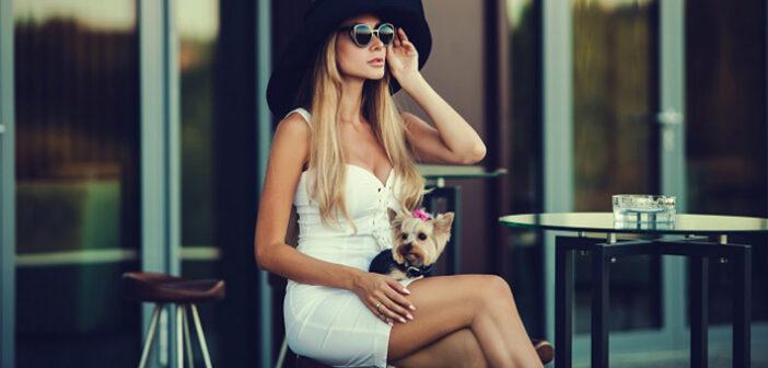 Cafe-Besuch mit dem Hund: Tipps und Tricks für Hund und Halter