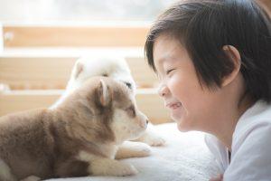 Mit einem Hund aufwachsen ist nicht nur schön, sondern lehrt Kinder Respekt vor Lebewesen und Verantwortung zu übernehmen. (#04)