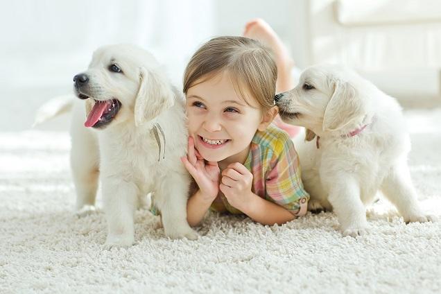 Hundewelpen mit Mädchen: (#09)