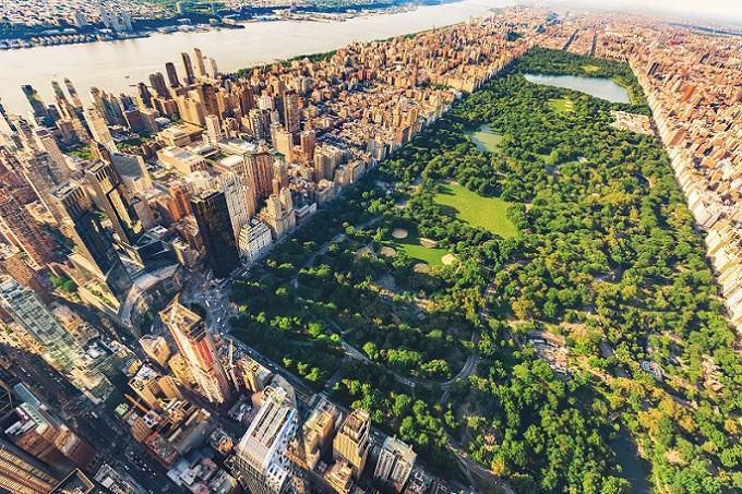 Ob Frühling, Sommer, Herbst oder Winter - der Central Park bietet zu jeder Zeit des Jahres Unterhaltung, Erholung und Spaß für Mensch und Tier. (#01)