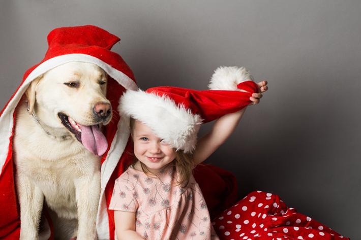 Zeigt her, euere Zähne! Damit die Zähne und das Zahnfleisch Ihres Haustieres lange schön und gesund bleiben, brauchen die Hunde regelmäßig Kauknochen. (#05)