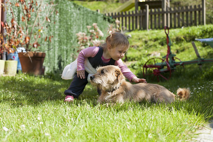 Die Körpersprache ist nicht nur beim Menschen ein untrügliches Zeichen für echte Emotionen. Auch Hunde zeigen ganz instinktiv und ohne jedes Geräusch, was gerade in ihnen vorgeht. Die Körpersprache ist die verlässlichste und ehrlichste Form der Kommunikation, denn sie wird nur vom Gefühl gesteuert. (#03)