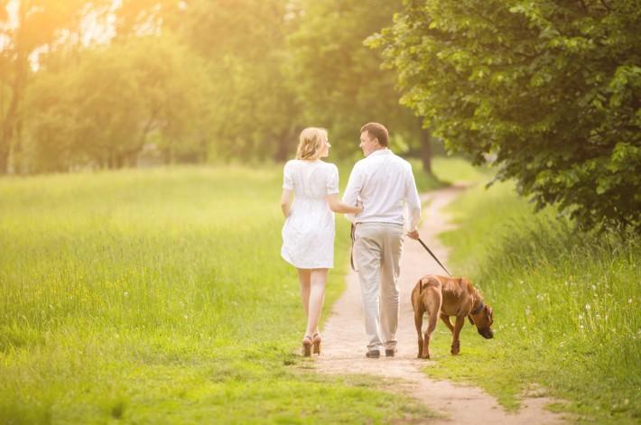 In den Nationalparks in Frankreich kann man wunderschöne Hundespaziergänge planen. (#2)