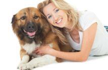 Wellness mit dem Vierbeiner: Entspannter Urlaub mit Hund