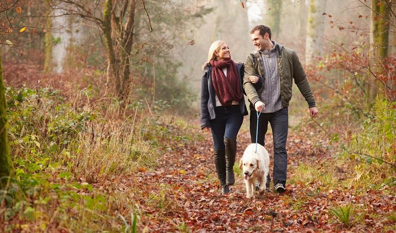 Tatsächlich sind für den Hund vor allem lange Spaziergänge echte Wellness-Erlebnisse. Wer im Moment noch denkt, dass dies nicht viel Entspannung mit sich bringen kann, der kann sich in einem Urlaub eines Besseren belehren lassen. Die Natur hat eine ganz besondere Wirkung auf den eigenen Körper. (#02)
