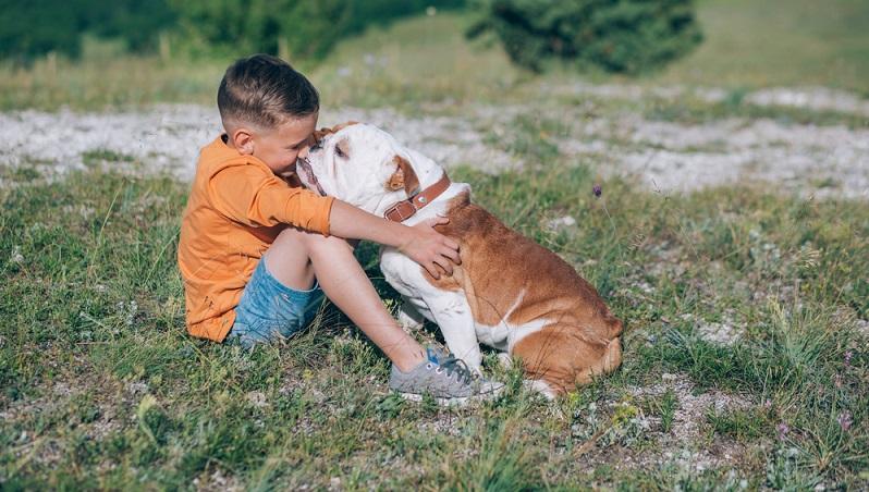 Bulldoggen, insbesondere die Welpen, verlangen viel Zuneigung und Zärtlichkeit, daher wird die Beziehung zwischen Bulldogge und Mensch von Hundehaltern auch oft als sehr intensiv empfunden. Doch Achtung: Auch mit Mut, Eigensinn und Selbstbewusstsein ist zu rechnen. (#03)