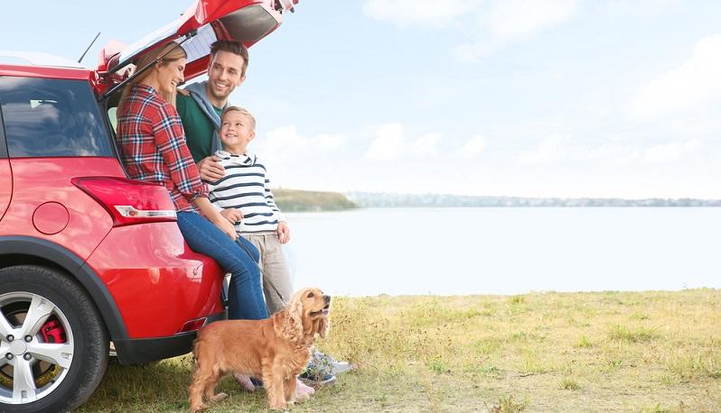 Regelmäßige Pausen sind wichtig, um die Fahrt auch für den Hund so angenehm wie möglich ausfallen zu lassen. (#03)