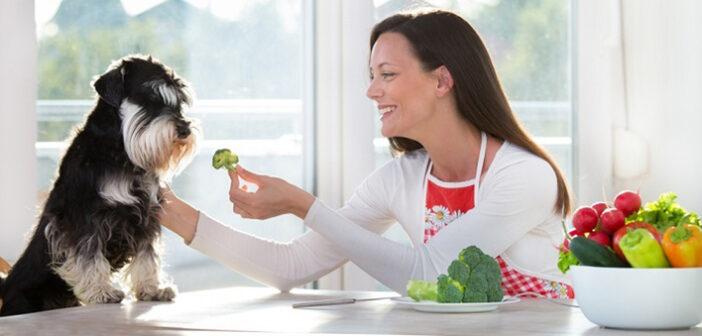 Die Top 5 Merkmale für eine gesunde Ernährung