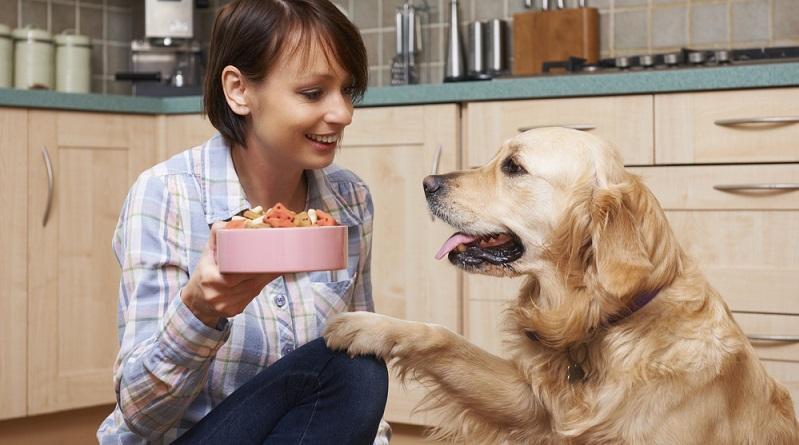 Es gibt durchaus Hersteller, die das Wohl des Tieres im Blick haben und beispielsweise keine Konservierungsstoffe verwenden, keine synthetischen Vitamine zusetzen und den Anteil an Fleisch und Knochen hochhalten. (#04)