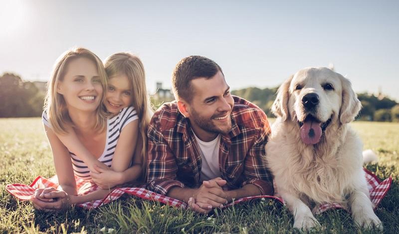Ohne einen gesunden Familienhund sind Eltern und Kinder nicht glücklich. (#4)