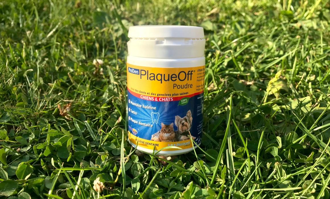 ProDen PlaqueOff - ein Pulver zur Zahnreinigung
