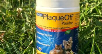 ProDen PlaqueOff: das Zahnpflegeprodukt im Test