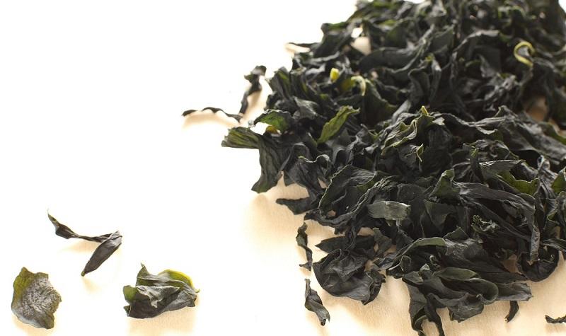 PLATINUM Trockenfutter Inhaltsstoffe: Getrocknete Algen kennt man vom Sushi.