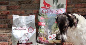 GENESIS vs. PLATINUM im Hundefutter Test vergleichen wir beide Vollnahrungen