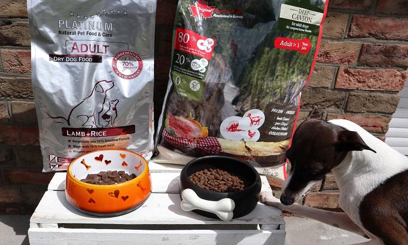 Aponi macht den PLATINUM Hundefutter Test mit der Sorte Adult Lamb+Rice