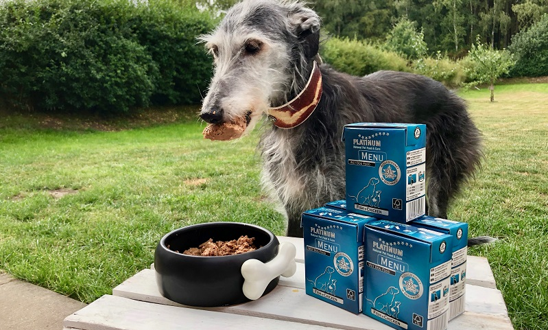 Das Hundefutter MENU FISH+CHICKEN von PLATINUM mag Carlotta besonders.
