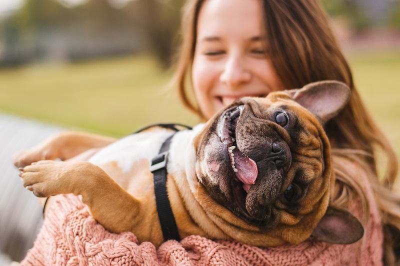 Meistens reicht schon eine oder zwei dieser Maßnahmen, sobald der Hund wieder normal atmet, kann man mit der Behandlung aufhören. (#02)
