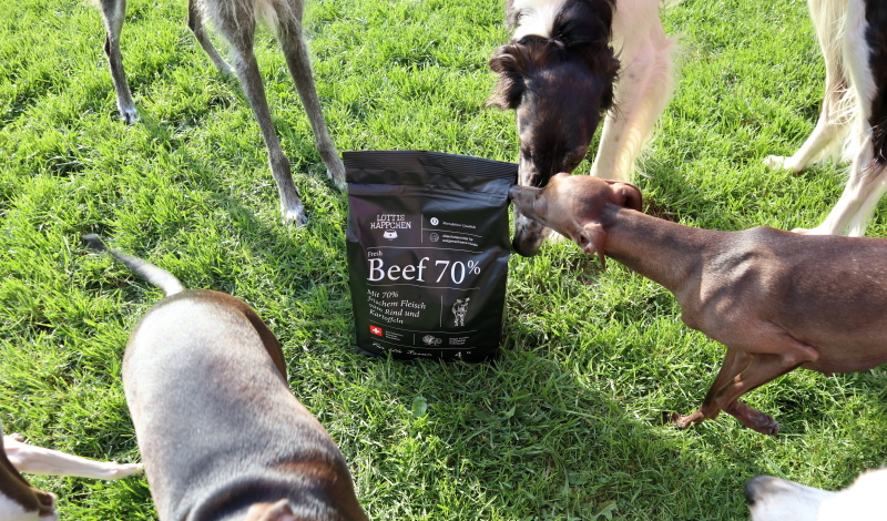 Wir testen das halbfeuchte Hundefutter LOTTIS HÄPPCHEN Fresh Beef.