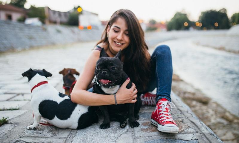Selbstverständlich kümmern sich die meisten Hundebesitzer am liebsten rund um die Uhr selbst um den vierbeinigen Freund. Doch manchmal benötigt man einen Hundesitter, denn die Alternative, das Tier viele Stunden allein im <strong>Hause</strong> zu lassen, ist nicht akzeptabel.  ( Foto: Shutterstock-hedgehog94 )