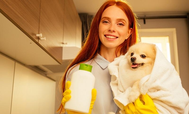 Die beste Wirkung wird erzielt, wenn das Nachtkerzenöl für Hunde sowohl innerlich als auch äußerlich angewendet wird. ( Foto: Shutterstock-yurakrasil )
