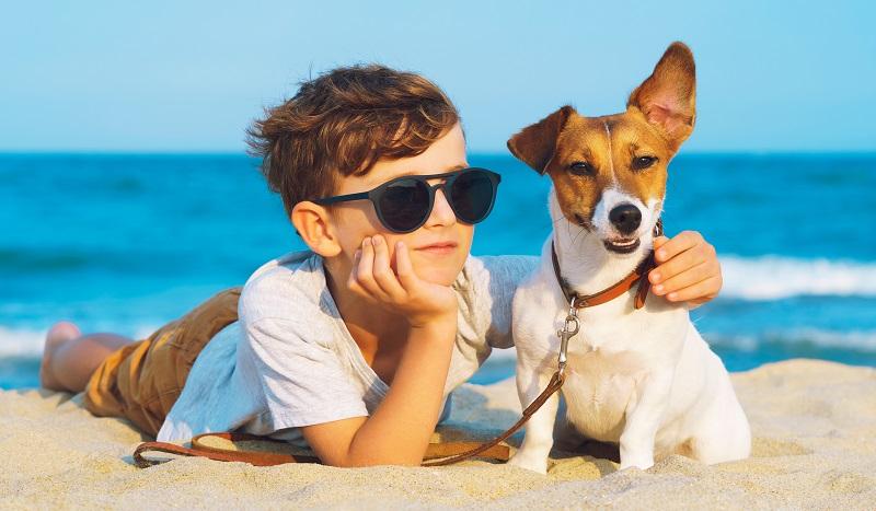 In Freibädern und Badeanstalten ist der Hund in den meisten Fällen nicht erlaubt. Ansonsten gelten an Stränden zeitliche Vorgaben, die sich auf die Badesaison beziehen.  ( Foto: Shutterstock-Larina Marina )