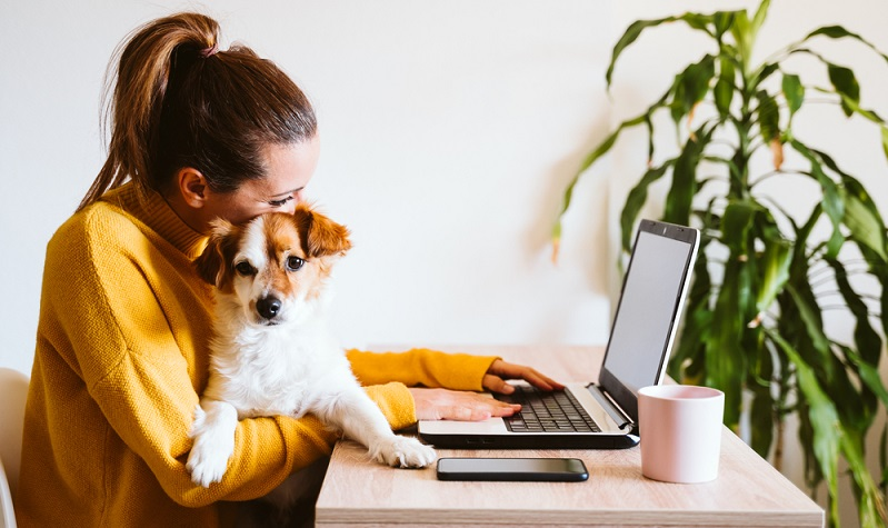 Während in vielen öffentlichen Gebäuden der Hund gar nicht erlaubt ist, genehmigen manche Arbeitgeber ihren Angestellten die Mitnahme.  ( Foto: Shutterstock- eva_blanco )