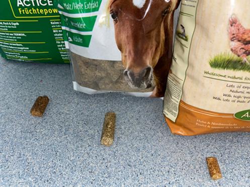 Von rechts: Lukullus (kalt gepresstes Hundefutter), Pferde-Leckerli (Pressfutter), Markus-Mühle (kalt gepresstes Hundefutter)