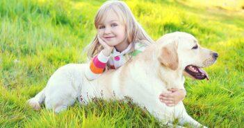 Labrador Retriever: Ein Hund für die ganze Familie (Foto: Shutterstock-Rohappy)