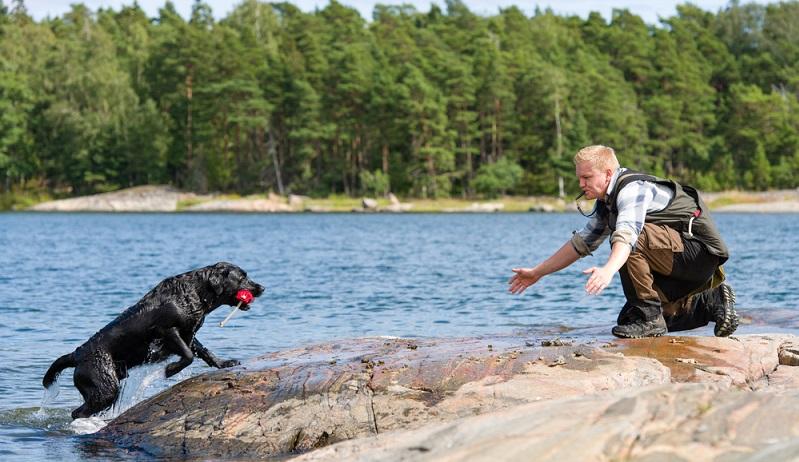 Als Stubenhund ist der Labrador Retriever gänzlich ungeeignet. Er liebt die Bewegung, draußen sein, lange Spaziergänge, joggen und auch wandern. (Foto: Shutterstock-Jari Hindstroem )