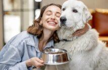 Hunde artgerecht füttern: Der Wolf als Vorbild? ( Foto: Shutterstock- RossHelen )