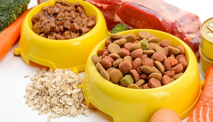 Wer seinen Hund artgerecht füttern möchte, muss sich entscheiden: Nass- oder Trockenfutter?  ( Foto:  Shutterstock- Yuriy Golub )