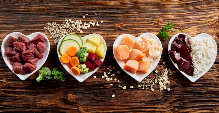 Wer artgerecht füttern möchte, sollte sich zum einen umfassend über die Ernährung, über Nährstoffzusammensetzungen und Vitamine informieren.  ( Foto: Shutterstock-stockcreations )